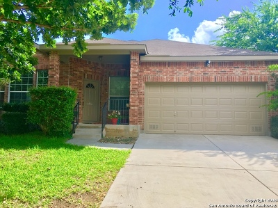 Cibolo Single Family Home New: 137 Westerly Pl