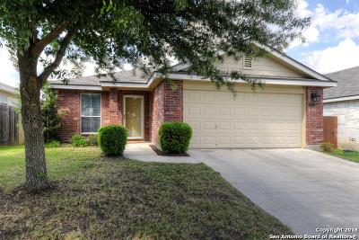 San Antonio Single Family Home New: 10707 Tiger Horse Dr