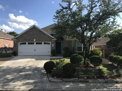 San Antonio TX Single Family Home New: $255,000