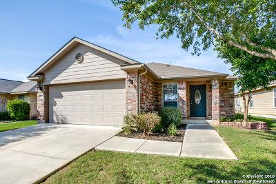 San Antonio Single Family Home New: 5839 Avalon Ter