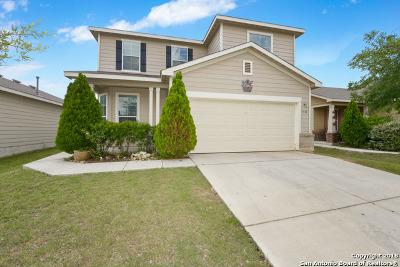San Antonio Single Family Home New: 3530 Palmetto Pass