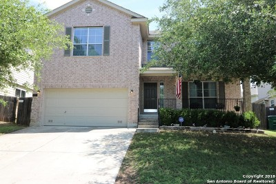 San Antonio Single Family Home New: 7826 Beechnut Oak