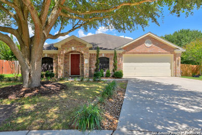 Cibolo Single Family Home New: 117 Snowberry Dr