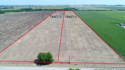 Guadalupe County Residential Lots & Land For Sale: Tbd Tract 1 Glenewinkel Rd