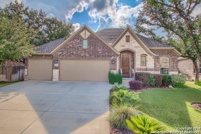 Boerne TX Single Family Home New: $325,000