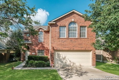 San Antonio Single Family Home New: 13607 Auburn Oaks