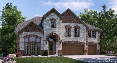 San Antonio Single Family Home New: 16811 Sonoma Ridge