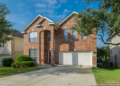 San Antonio Single Family Home New: 20431 Cliff Park
