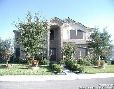 Helotes Single Family Home New: 9503 Tascate Dr
