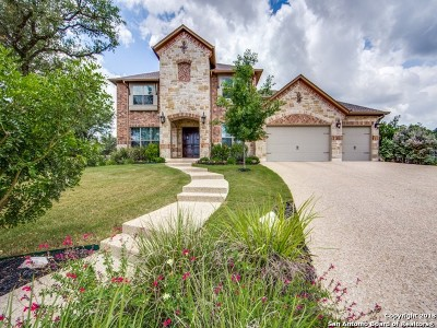 San Antonio Single Family Home New: 24007 Mary Pt