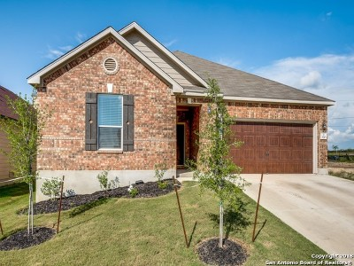 Cibolo Single Family Home New: 320 Landmark Oak