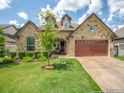 Kendall County Single Family Home New: 164 Autumn Ridge