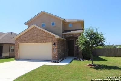 San Antonio TX Single Family Home New: $194,900