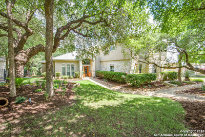 San Antonio Single Family Home New: 25212 Wentworth Way