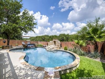 San Antonio TX Single Family Home New: $459,000