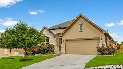 Helotes Single Family Home New: 17906 Bierstadt Mt