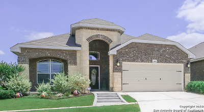 San Antonio TX Single Family Home New: $247,800
