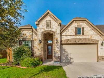 San Antonio Single Family Home New: 12523 Stillwater Crk