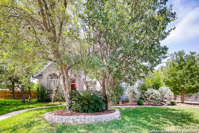 Helotes Single Family Home For Sale: 9507 Jason Bend
