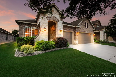 Helotes Single Family Home For Sale: 10753 Barnsford Ln