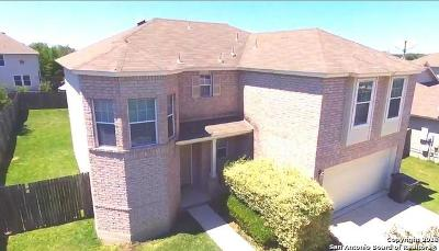 New Braunfels Single Family Home New: 2858 Tag Ln