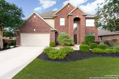 San Antonio Single Family Home New: 23303 Treemont Park