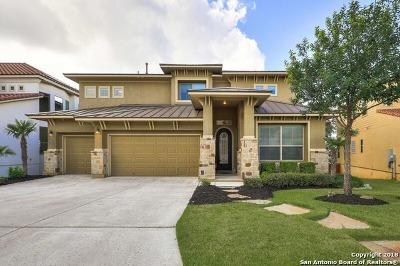 San Antonio Single Family Home New: 17934 Via Del Arbol