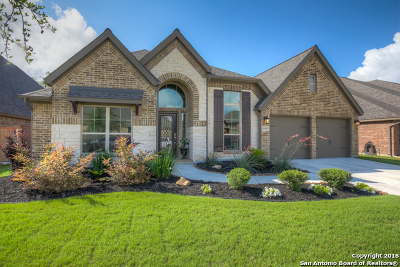 New Braunfels Single Family Home New: 635 Waratah Ave