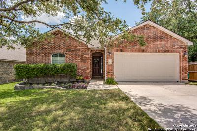 San Antonio Single Family Home New: 18 Canterview