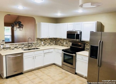 San Antonio Single Family Home New: 17207 Molino Ct