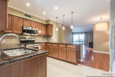 San Antonio Condo/Townhouse New: 100 Lorenz Rd #303