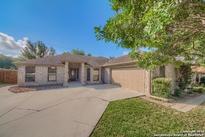 San Antonio Single Family Home New: 13906 Sunny Glen