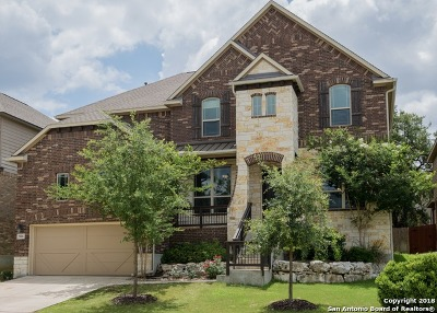 San Antonio Single Family Home New: 25606 Wentink Ave