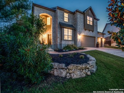 San Antonio Single Family Home New: 23603 Sunset Peak
