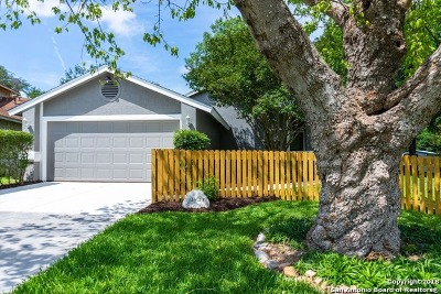 San Antonio Single Family Home New: 13403 Pebble Circle