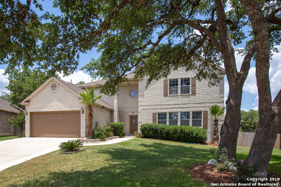 San Antonio Single Family Home New: 22211 Pelican Crk