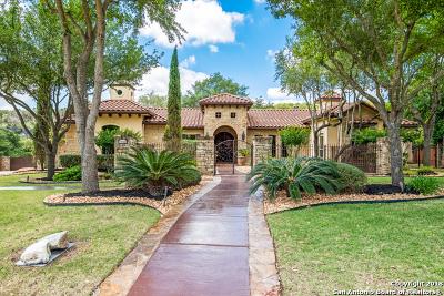 San Antonio Single Family Home New: 17702 Wild Basin