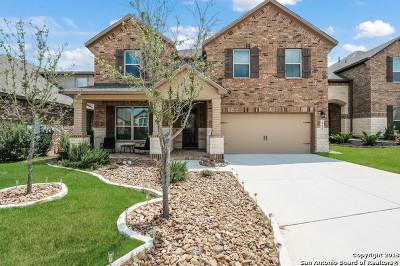 San Antonio Single Family Home New: 28459 Willis Ranch