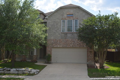 San Antonio Single Family Home New: 26131 Lookout Falls