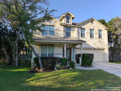 San Antonio Single Family Home New: 26014 Rocky Plains