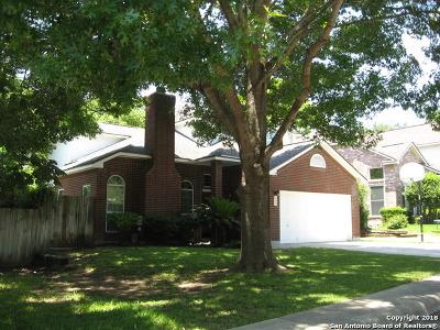San Antonio Single Family Home New: 15243 Spring Corner