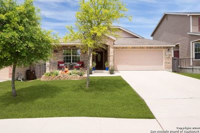 San Antonio Single Family Home New: 2207 Hornsby Bend