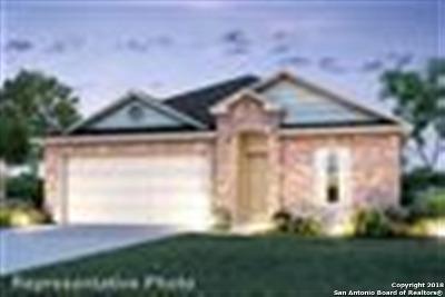 San Antonio Single Family Home New: 10018 Big Spring Lane