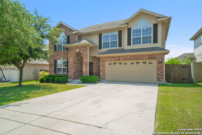 Guadalupe County Single Family Home New: 2616 Riva Ridge Circle