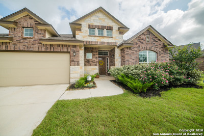 San Antonio Single Family Home New: 8139 Limerick Falls