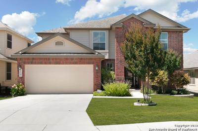 San Antonio Single Family Home New: 11647 Cardinal Sky