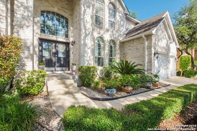 San Antonio Single Family Home New: 9803 Kerrville St