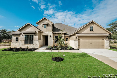 Woods Of Boerne Single Family Home For Sale: 289 Woods Of Boerne Blvd
