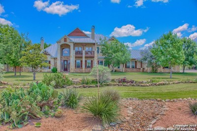 Pipe Creek TX Single Family Home For Sale: $1,200,000