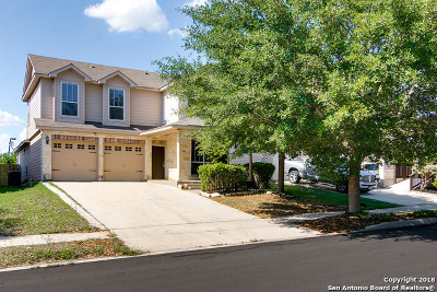 Single Family Home For Sale: 2207 Bigmouth Rod